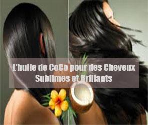 l 39 huile de coco un soin parfait pour les cheveux secs ab m s et cassants. Black Bedroom Furniture Sets. Home Design Ideas